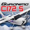 C172S Pad