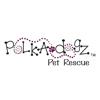 Polka Dogz Wiki
