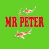 Mr Peter Chinese Takeaway