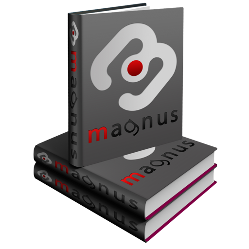 Magnus Czech Dictionaries