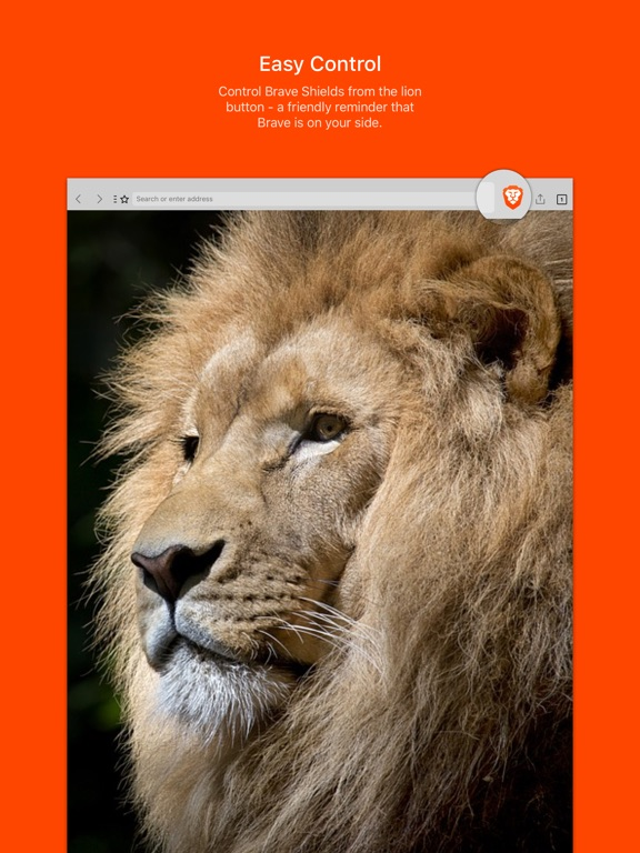 Brave Browser: Fast AdBlocker Screenshot