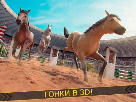 моя лошадь гонки на iPad
