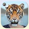 Animal Face Changer Photo Editor & Selfie Mask