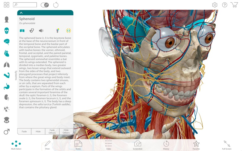 Screenshot do app Human Anatomy Atlas 2017 - Complete 3D Human Body