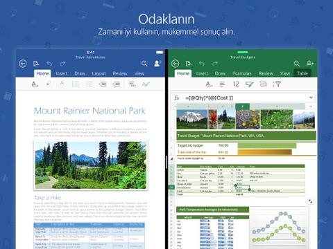 Microsoft Word screenshot 3
