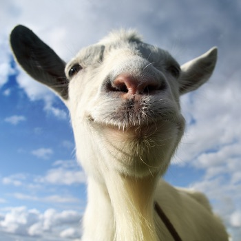Goat Simulator app for iphone