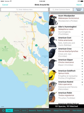 iBird Yard+ Guide to Birds screenshot 3