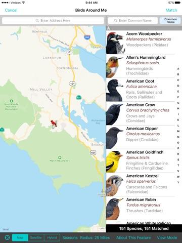 iBird Yard+ Guide to Birds screenshot 3