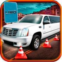 Urban Limo Sports Car Drive