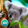 Koala Simulator: Wildlife Game