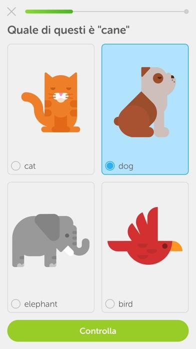 Duolingo Screenshot