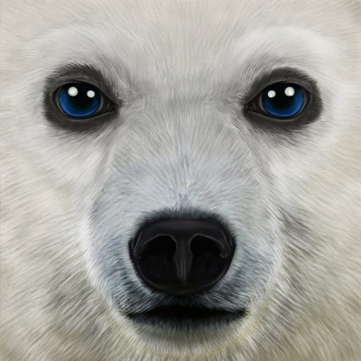 Ultimate Arctic Simulator app for iphone