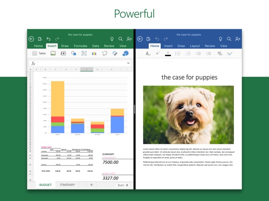 Microsoft Excel Screenshots