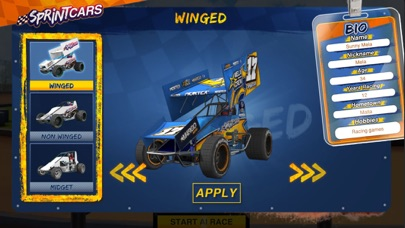 Dirt Trackin Sprint Cars screenshot 1
