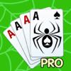 Spider solitaire PRO ...
