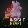 ANIMA RES - INSIGHT HEART Grafik