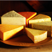 100 Homemade Cheese Recipes app review