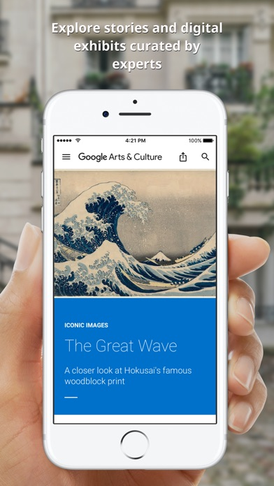 Google Arts & Culture screenshot1