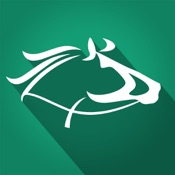 Horse Racing Pro - 3D Simulated Virtual Betting
