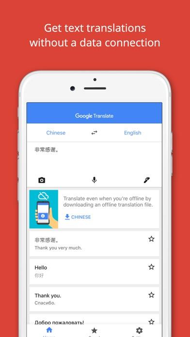Google Translate Screenshot 2