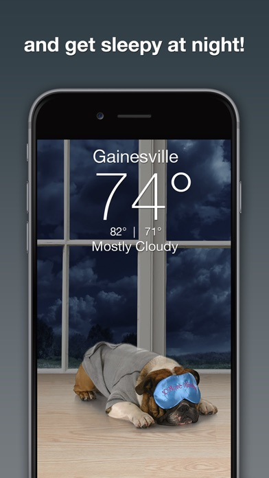 download Perrito y Clima: Weather Puppy apps 1