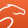Equisense, progresser à cheval