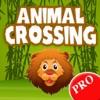 Animal Crossing PRO