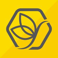 App Icon SMYLEAN