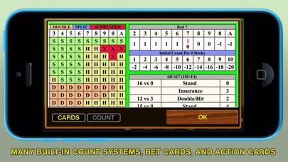 Blackjack 21 Pro Multi-Hand screenshot three