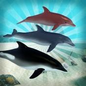 Dolphin Diner [iOS]