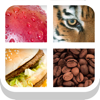 Close Up Pics - Fun Word Games