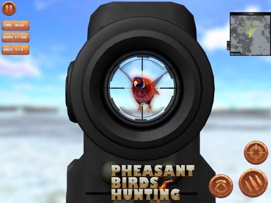 Охота за птицами Скриншоты7