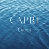 Capri E-Form