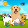 Knbmedia - My Pets: Cat & Dog For Kids artwork