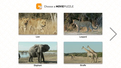 MoviePuzzles – Wild Animals screenshot 1
