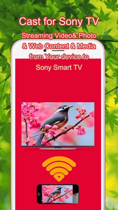 how to connect to plus 7 app to sony bravia