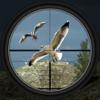 Bilal Ahmad - Birds Hunting - Clay Hunt Pro artwork
