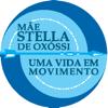 Lucas Teixeira Rocha - Orientações de Mãe Stella  artwork