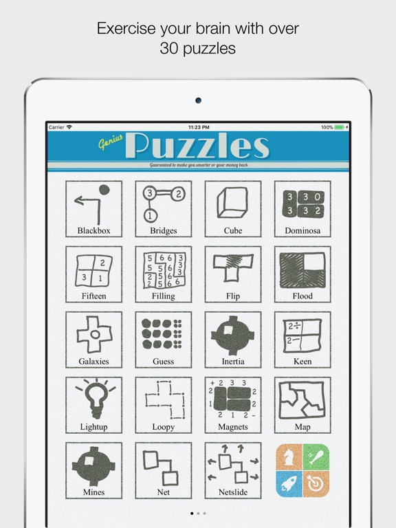 Genius Puzzles App Insight Download