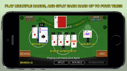 Blackjack 21 Pro Multi-Hand Screenshot