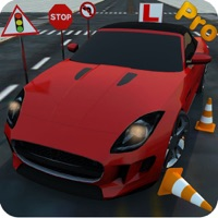 Real 3D Driving School - Pro