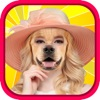 Animal Face Photo Sticker Booth Free - Funny Animals Head Changer Montage Maker & Selfie Editor