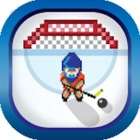 Fantasy Hockey Goalie 2014 Pro icon