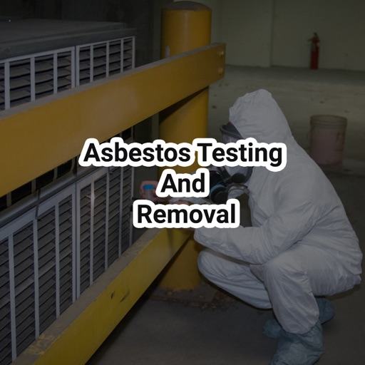 Image Result For Asbestos Testing Lawyers