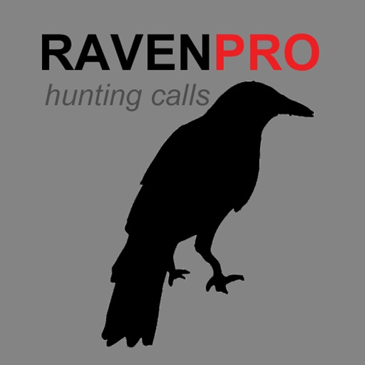 REAL Raven Hunting Calls - 7 REAL Raven CALLS & Raven Sounds! - Raven e-Caller - Ad Free - BLUETOOTH COMPATIBLE iOS App