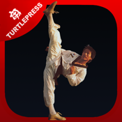 Ultimate Martial Arts Conditioning Series icon