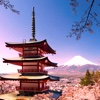 Japan Travel:Guide and Tips