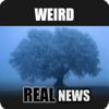 Weird Real News