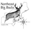 Northeast Big Bucks - Magazinecloner.com US LLC