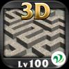 3D迷路 Lv100